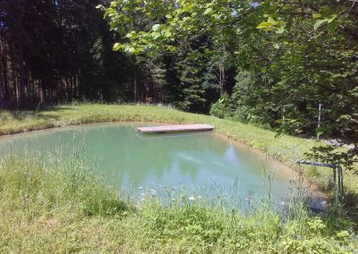 Quellenhof Naturbadebereich