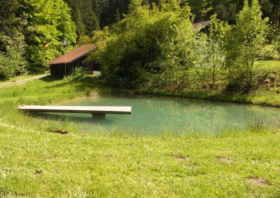 Naturbadeteich mit Steg